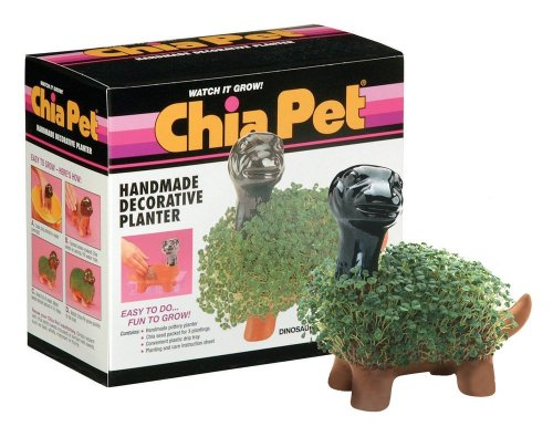 Chia Dinosaur Collectable