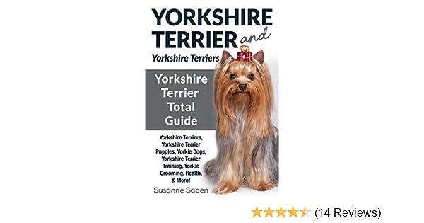 Yorkshire Terrier And Yorkshire Terriers: Yorkshire Terrier Total Guide  Yorkshire Terriers, Yorkshire Terrier Puppies, Yorkie Dogs, Yorkshire  Terrier
