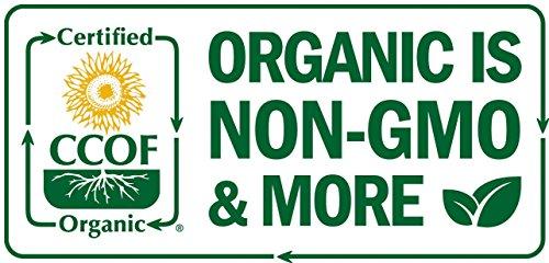 Aloe Vera Leaves Tea Organic 8oz