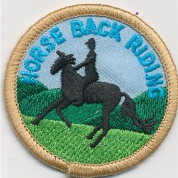 Cub Girl Boy HORSE BACK RIDING Embroidered Iron-On Fun Patch Crests Badge Scout Guides