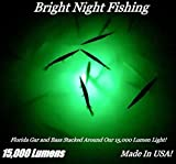 Bright Night Fishing Under Water Light Green Led 15000 Lumens Night Fishing 300 LED Green Priority Shipping Submersible Salt fresh water dock light boat crappie 12v dc (optional 110v ac) BR:15000