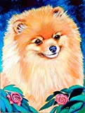 Caroline's Treasures 7165CHF Pomeranian Garden Bud Flag Canvas, Large, Multicolor