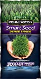 Pennington Smart Seed Dense Shade Mix 7 lb.