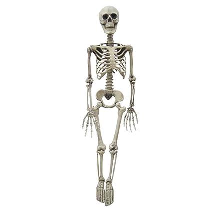 Amazon com: Keebgyy Halloween Skeleton, Plastic Full Body