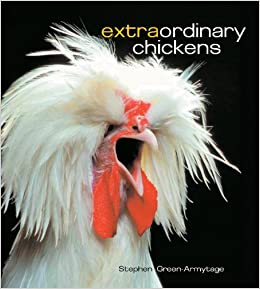 Extraordinary Chickens Green Armytage Stephen 9780810933439 Amazon Com Books