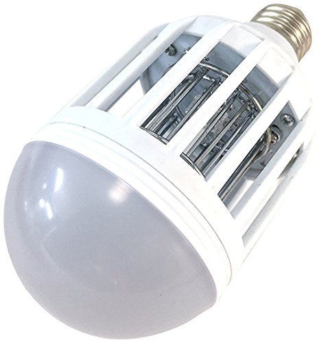 Insects Led Lights - 3