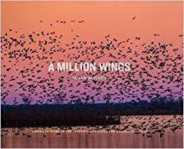 A Million Wings: A Spirited Story of the Sporting Life Along the