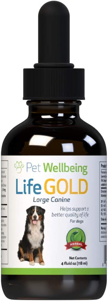 Pet Wellbeing - Life Gold for Large Dogs - Immune system support and antioxidant protection for canines with cancer - 4 oz (118 Milliliter)