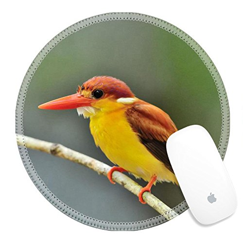 Luxlady Round Mouse Pad Natural Rubber Mousepad 31333271 Bird Rufous backed Kingfisher Thailand