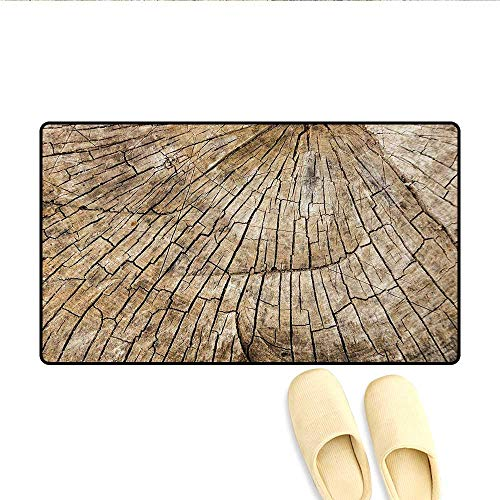 Bath Mat,Ancient Aged Tree Trunk Cracked Body Natural Growth Ecology Environment Themed Print,Door Mats Area Rug,Brown,Size:16
