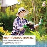Arthur Andrew Medical, Neprinol AFD, Enzyme Blend