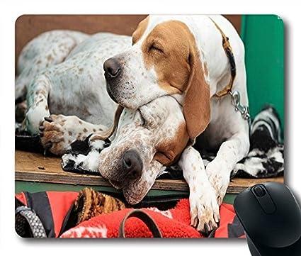 Animales graciosos perros dormir estilo alfombrilla de ratón tamaño 9 Inch (mm) X 7