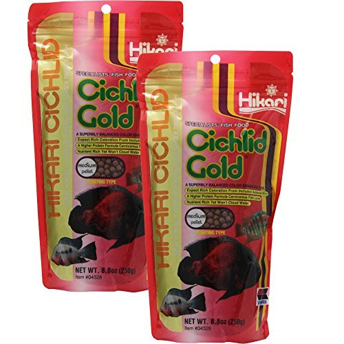 Hikari Gold Floating Pellets (Hikari 8.8-Ounce Cichlid Gold Floating Pellets for Pets, Medium 2-Pack)