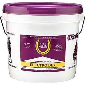 Horse Health Electro Dex 3