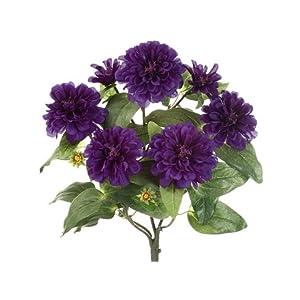 "18"" Zinnia Bush x5 Purple (Pack of 12) 107"