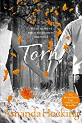 Torn: 2/3 (Trylle Trilogy Young Adult Edn)