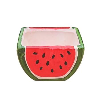 Amazon.com: WAIT FLY Cute Watermelon Shape Ceramics Planters ...