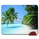 Nature ocean landscapes beach tropical islands palm trees 1920x1200 wallpaper mouse pad computer mousepad