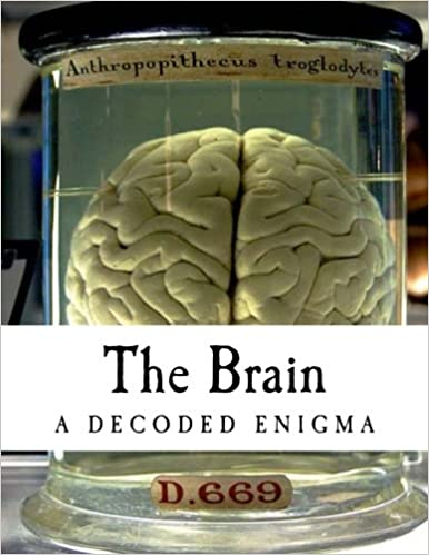 The Brain: A Decoded Enigma (Psychology): Dorin Teodor Moisa