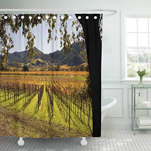 Emvency Fabric Shower Curtain Curtains with Hooks Colorful Vineyard Napa Valley in Autumn Green California Sonoma Fall Grapes Landscape Agriculture Field 72
