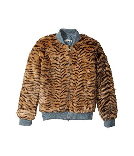 Stella McCartney Kids Baby Girl's Tilly Faux Fur Tiger Print Bomber Jacket (Toddler/Little Kids/Big Kids) Multi Tiger 14 Plus (Big Kids) by Stella McCartney Kids