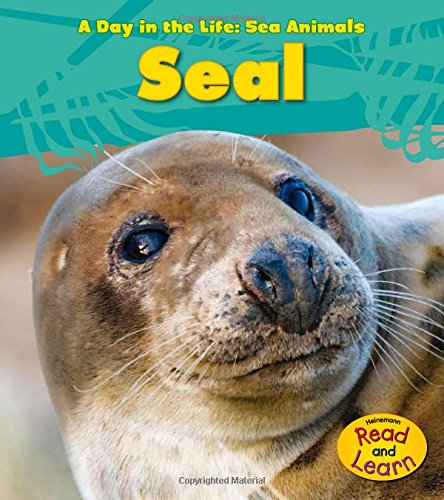 Seal (A Day in the Life: Sea Animals)