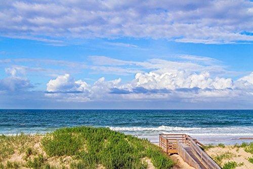 Wallmonkeys Wm364215 Ocean Beach Dunes Peel And Stick Wall Decals  48 In W X 32 In H
