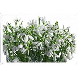 "Flower Tin Sign Snowdrops Flowers Bouquet Vase White Primrose Spring 37089 by Waller's Decor (7.8""x11.8"") 117"
