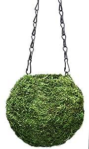 Supermoss (29348) Kokedama Planter, 6in Fresh Green
