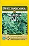 Seeds of Change Certified Organic Kale, True Siberian - 680 milligrams, 150 Seeds Pack