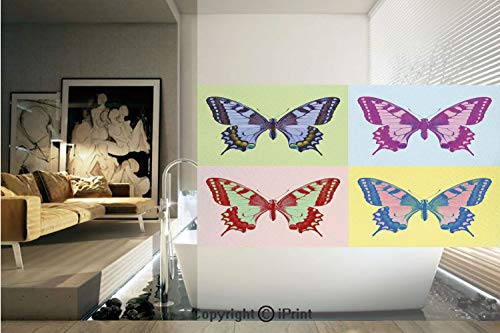 - Ylljy00 Decorative Privacy Window Film/Pop Art Swallowtail Pavilions Wild Life Transcendent Energies of Miraculous Wings/No-Glue Self Static Cling for Home Bedroom Bathroom Kitchen Office Decor Multi