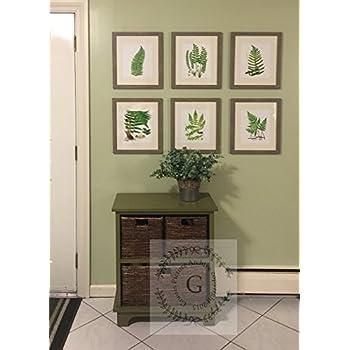 Fern Botanical Wall Art Unframed Set of 6 Home Decor Art Prints