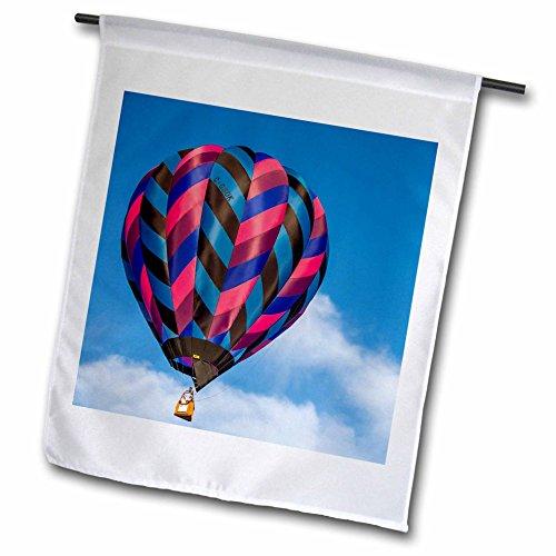 3dRose Danita Delimont - hot air balloons - Lake Havasu Balloon Festival. Soaring at the Balloon Field - 18 x 27 inch Garden Flag (Soaring Hot Air Balloon)