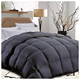 King Comforter Soft Summer Cooling Goose Down Alternative Duvet Insert 2100 Hypoallergenic Quilt with Corner Tab for all Season,Prima Microfiber Filled,Reversible Hotel Collection,Grey,90 X 102 inch