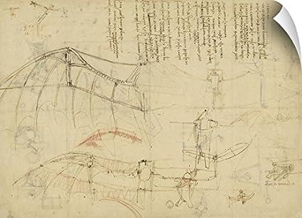 Amazon.com: Canvas on Demand Leonardo da Vinci Wall Peel Wall Art ...
