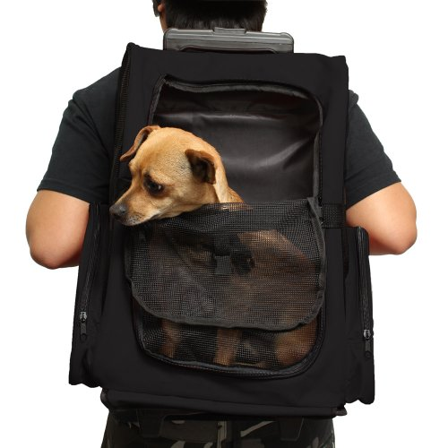 OxGord Rolling Backpack Pet Carrier, 14 x 11 x 19 - Inch, - Rolling Carriers Dog