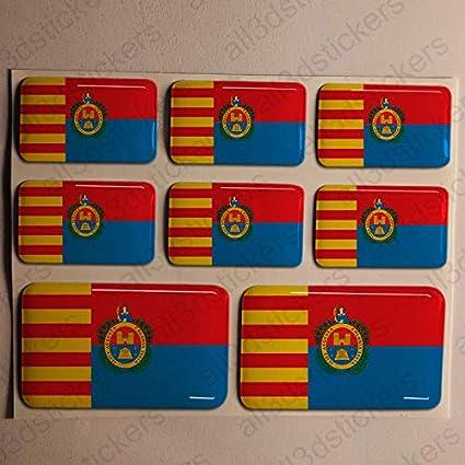 Pegatinas Elche España Resina, 8 x Pegatinas Relieve 3D Bandera Elche España Adhesivo Vinilo: Amazon.es: Coche y moto