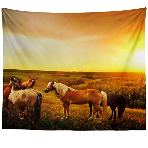 Westlake Art Wall Hanging Tapestry - Grassland Dirt - Photography Home Decor Living Room - 68x80in (American Stable Blanket)