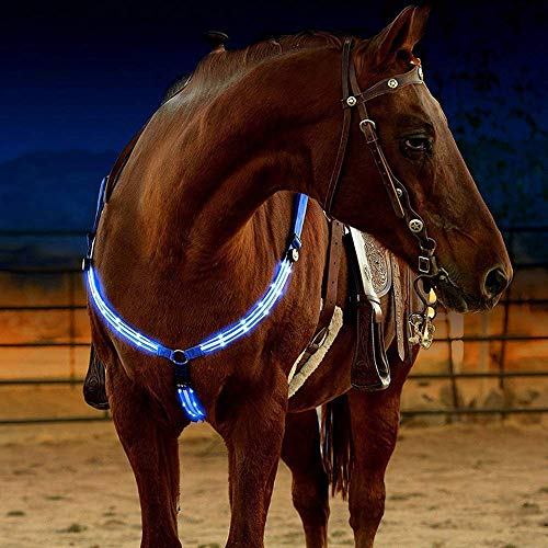 Sun Vale LED Horse Bridle Halter Best High Visibility Tack for Horse Riding Equestrian Safety Gear in Night Horse Breastplate Collar