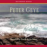 Front cover for the book Safe from the Sea by Peter Geye