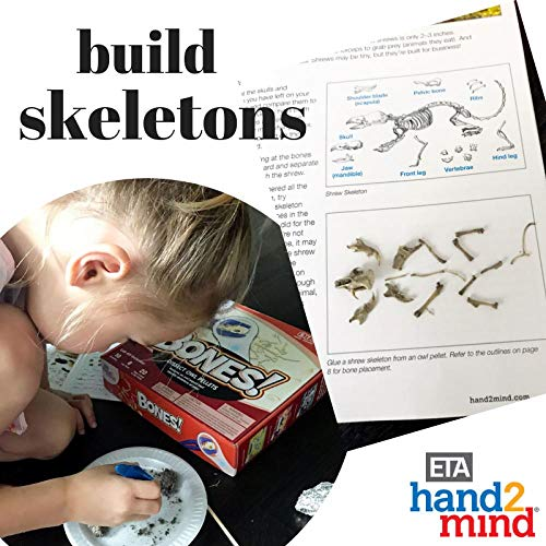 Animal Science Kit For Kids, Educational Toy (Age 8+) 10 STEM Experiments & Activities on Animal Biology, Dissect Owl Pellets & Study Bones, Gift for Girls & Boys, Children & Teens, STEM Authenticated by hand2mind (Image #5)