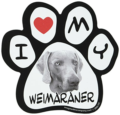 (Imagine This 5-1/2-Inch by 5-1/2-Inch Car Magnet Picture Paw, Weimaraner)