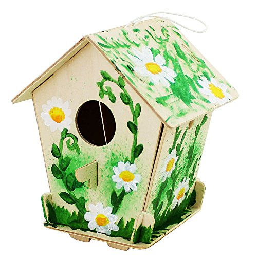 - Robud 3-D Painting Puzzle Bird House DIY Wooden Assembly Modle Building Kits With 6 Color Pigments & Brush Arts And Crafts For Kid Children Educational Fun Creative Toys (Bird House 3)