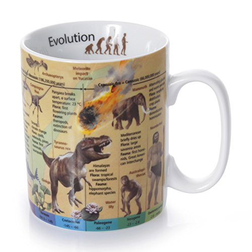 Könitz Mug - Evolution (English)