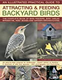 The Illustrated Practical Guide to Attracting and Feeding Backyard Birds, Jen Green, 0754819892