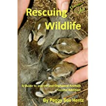 Rescueing Wildlife: A Guide to Helping Injured & Orphaned Animals