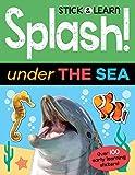 Splash! Under the Sea