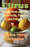 img - for Citrus: How to Grow and Use Citrus Fruits, Flowers, and Foliage book / textbook / text book