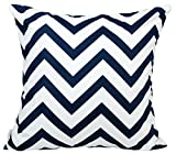 "TangDepot Decorative Handmade Zebra-Stripe / Wavy Line 100% Cotton Throw Pillow Covers /Pillow Shams, Many colors and sizes - (26""x26"", Navy)"