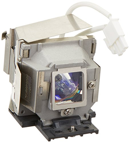 InFocus - Projector lamp - 3000 hour(s) (standard mode) / 4000 hour(s) (economic mode)